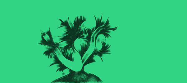 Planthead